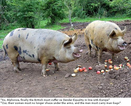 Euro Piggies